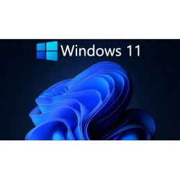 Windows 11 Pro USB flash