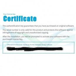Microsoft Office 2010 Professional Certificat de Licenta
