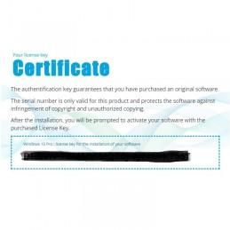 Windows 10 Pro Certificat licenta